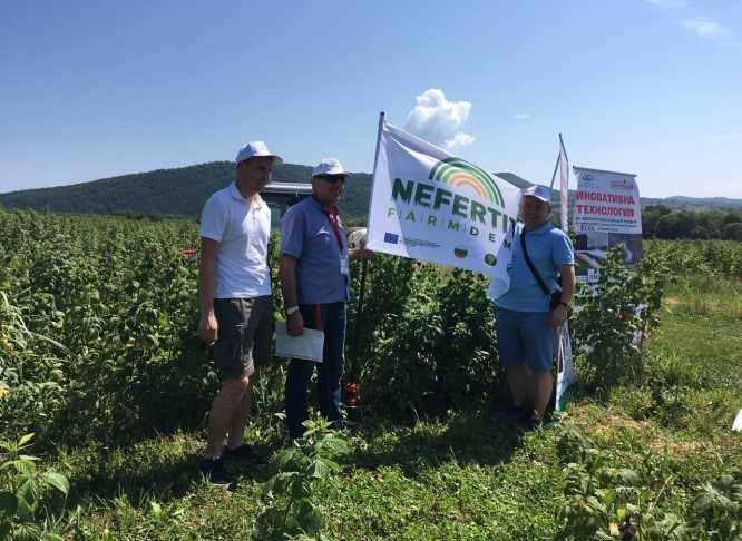 Network 09 event in BG-2019-07-19-1